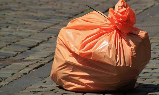 Action on illegal dumping called for